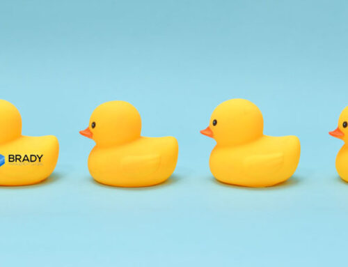 """Bookkeeping is as easy as """"Having your ducks in a row"""""""